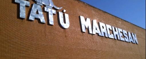 TATU Marchesan e GIOVANIBRUNO Corretora de Seguros